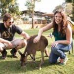 Australia: First Impressions