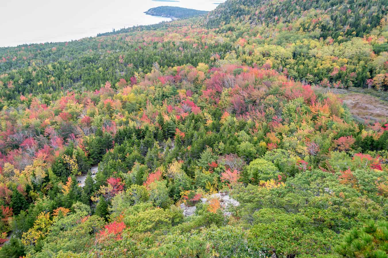 best time to visit Acadia National Park in the fall
