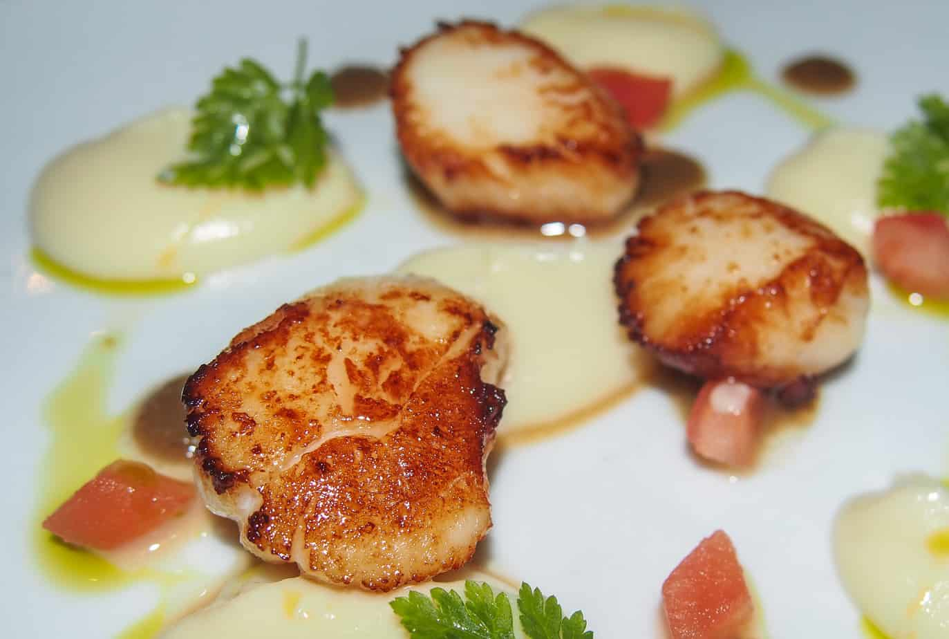 date ideas for Edinburgh - dish of scallops at restaurant