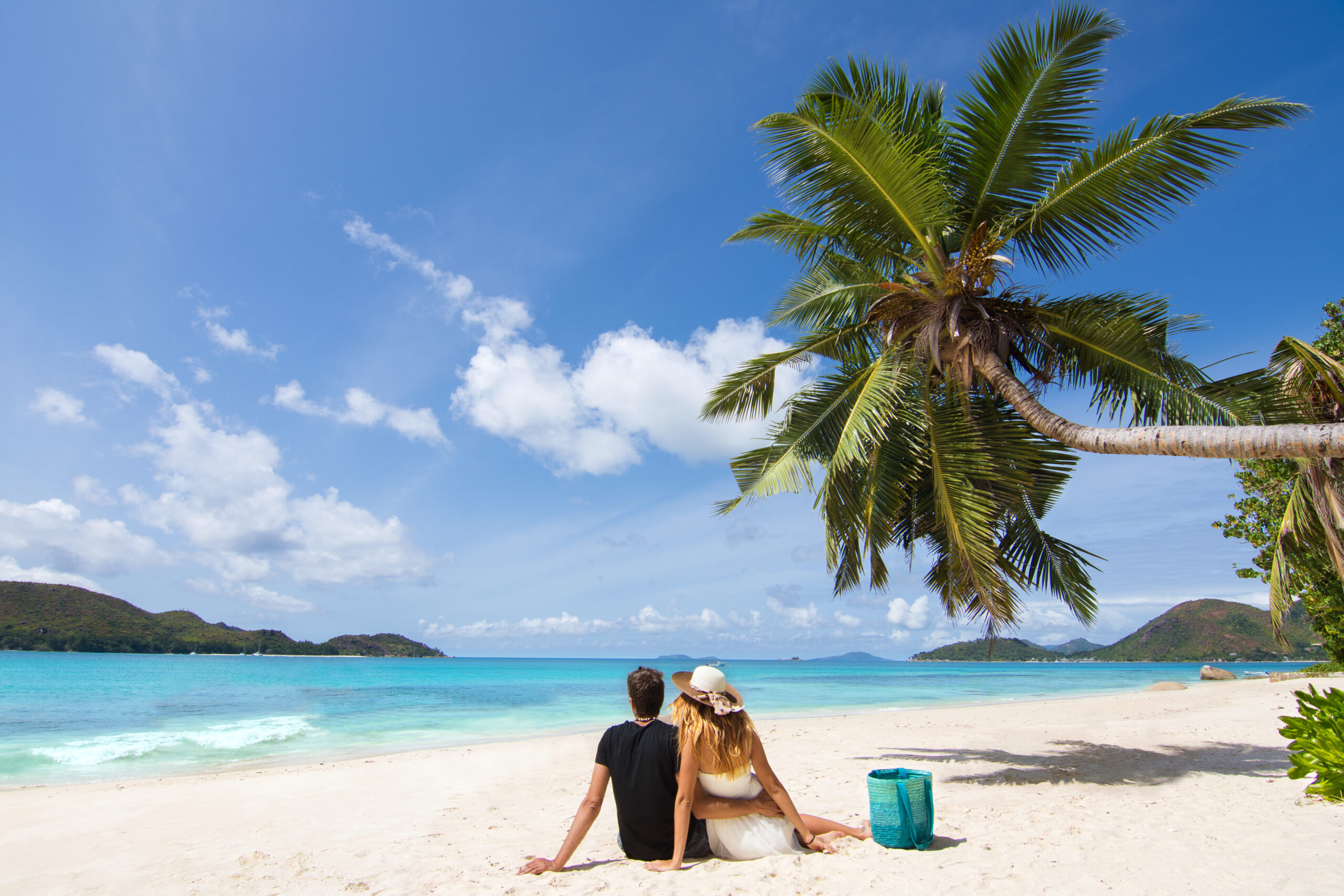 how to become a digital nomad header image- the backs of a couple sitting on a tropical beach with turquise water and a leaning palm tree