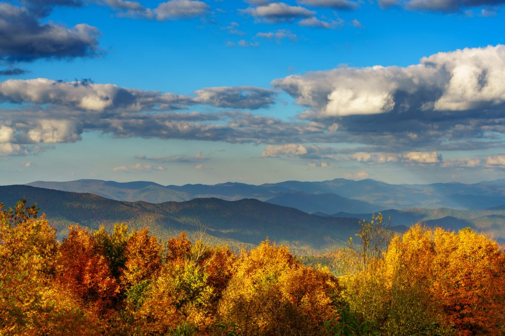 distant mountains with blue skies and fluffy clouds. fall colored trees in the foreground