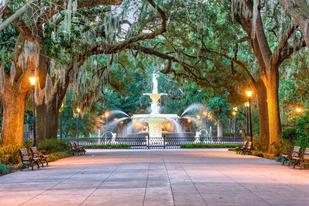 thick trees gather around an illuminated white fountain at night - Savannah, Georgia, USA at Forsyth Park.