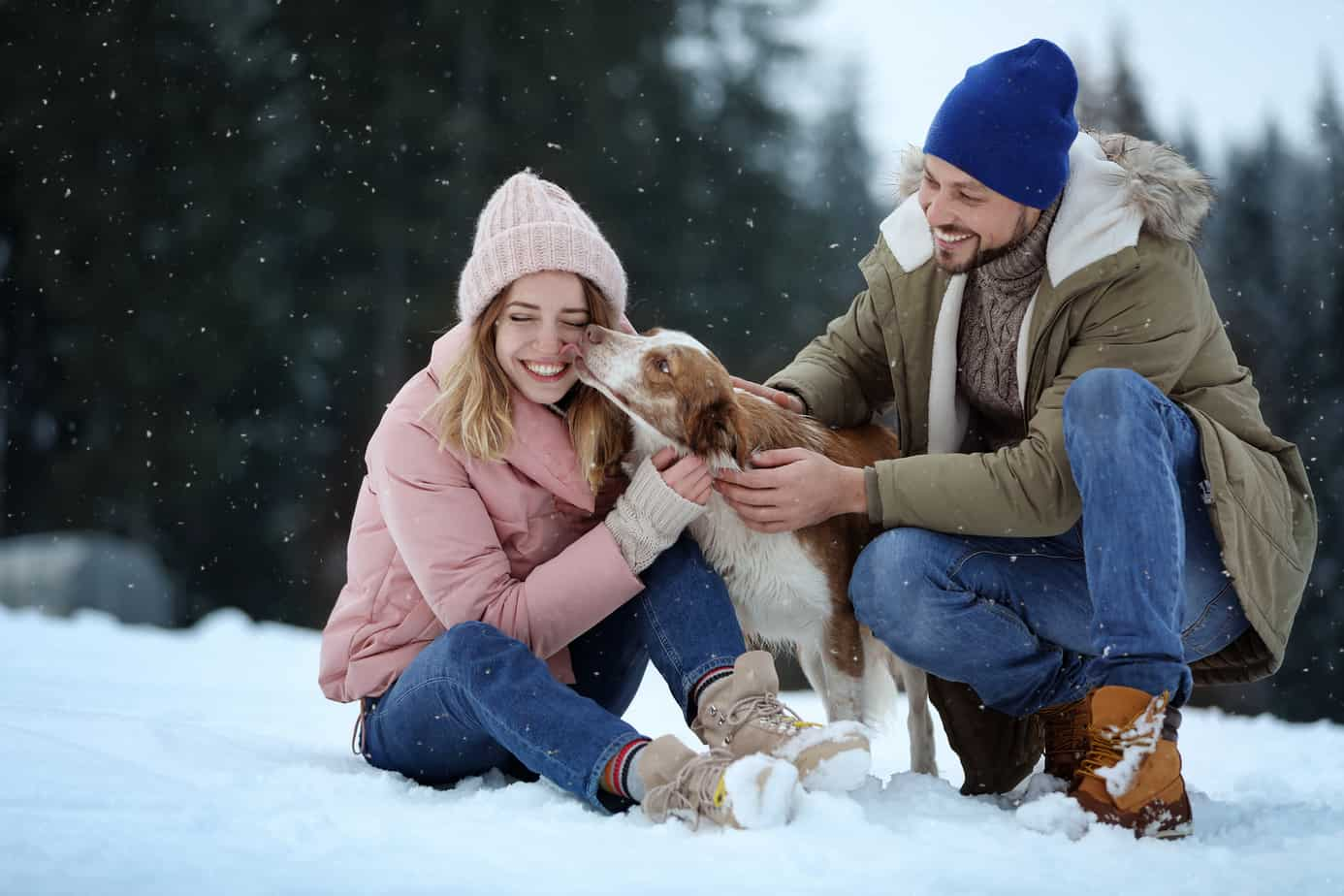 signs he wants to marry you header image - Cute couple playing in the snow with dog near forest. Winter vacation