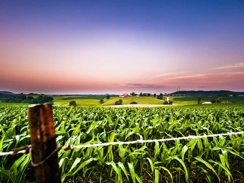 rural farm scene at sunset - header image romantic things to do in galena IL