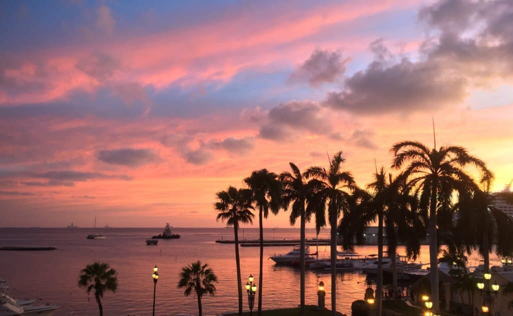 romantic things to do in aruba - colorful sunset behind silhouetted palm trees - colors reflected in water