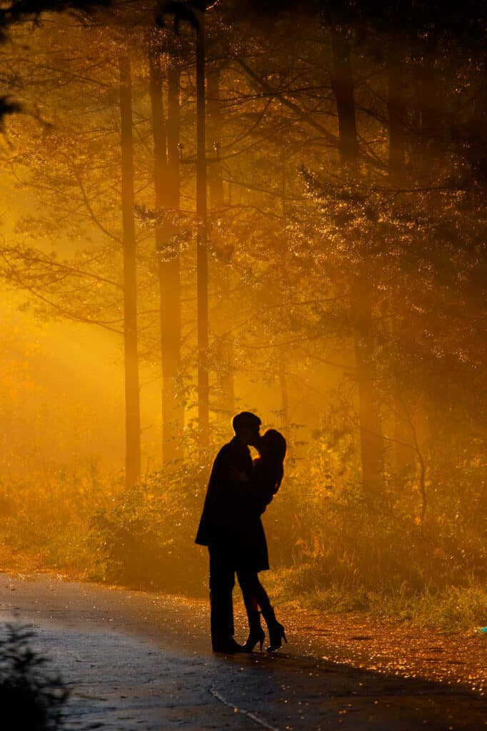 ways to show affection - beautiful shot of kissing couple in the sunlight, black silhouette of couple against golden trees