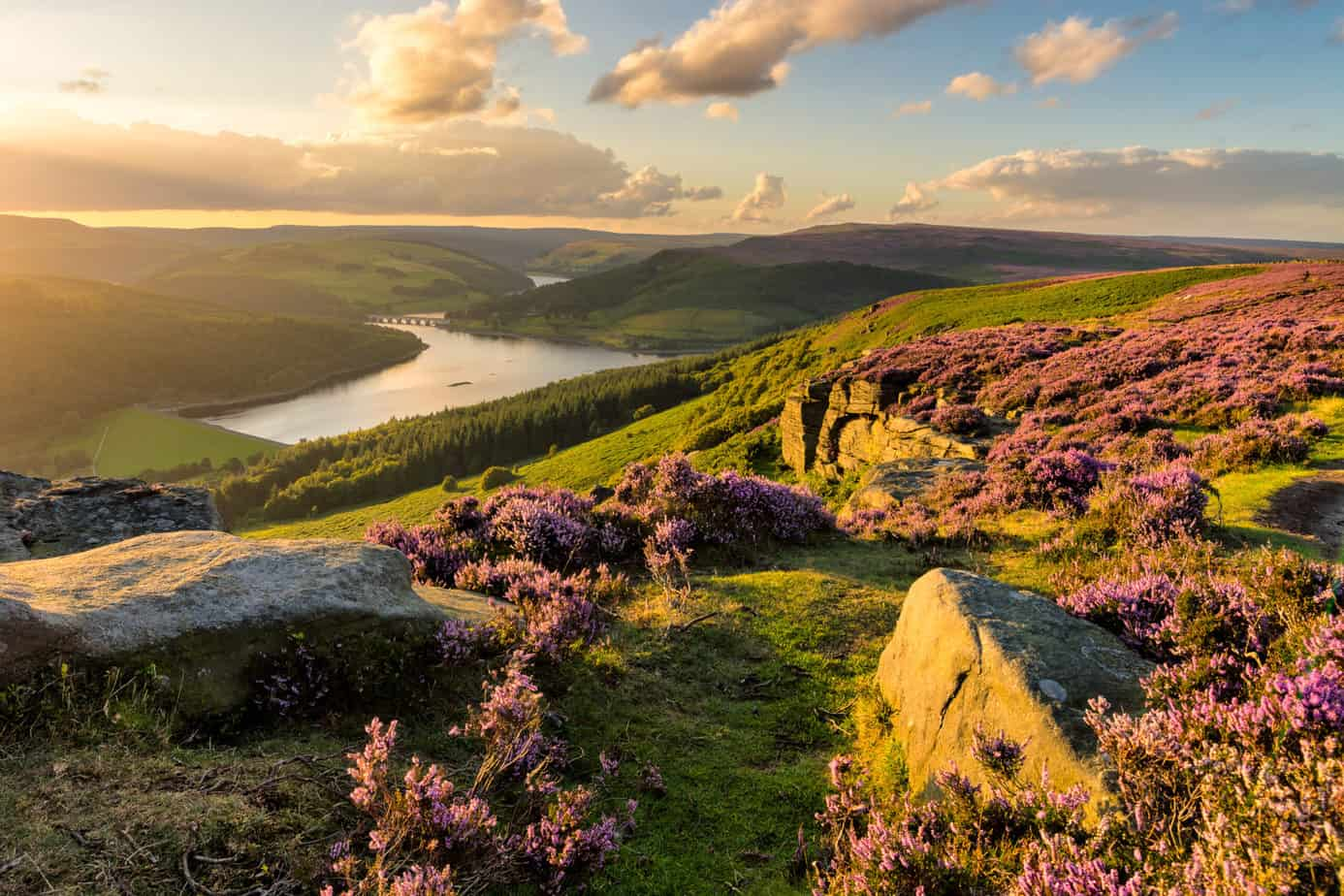 best places to visit in the uk - beautiful sunset over English countryside and mountains with purple flowers